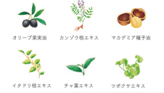 やずや植物の力